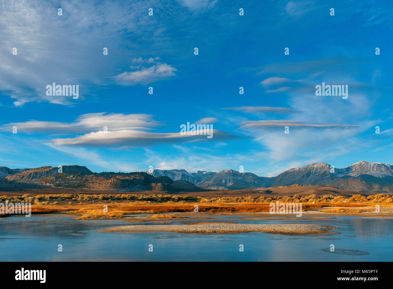 Wetlands, Mono Lake, Mono Basin National Forest Scenic Area, Inyo National Forest, Eastern Sierra, California - Stock Image