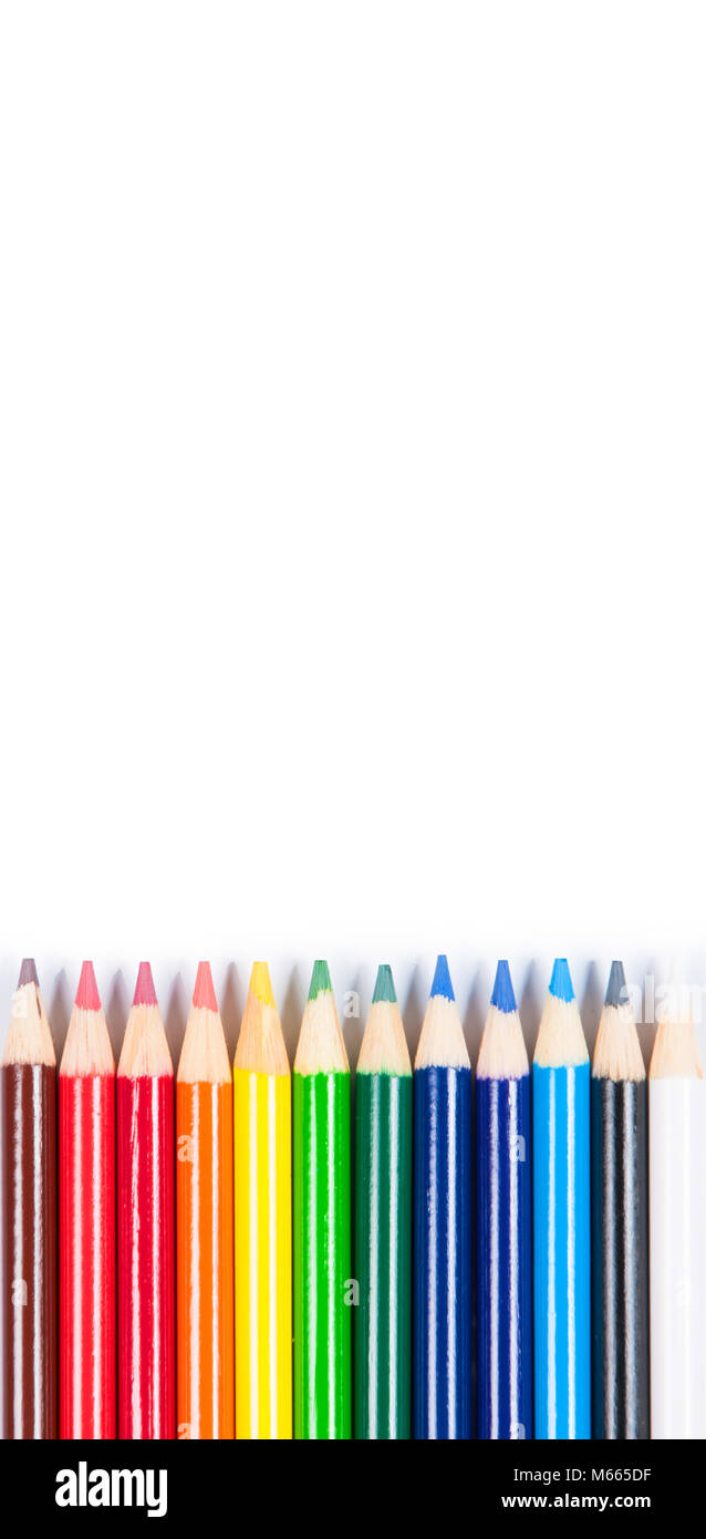 Coloured pencils isolated on the white background. Back to school Stock Photo