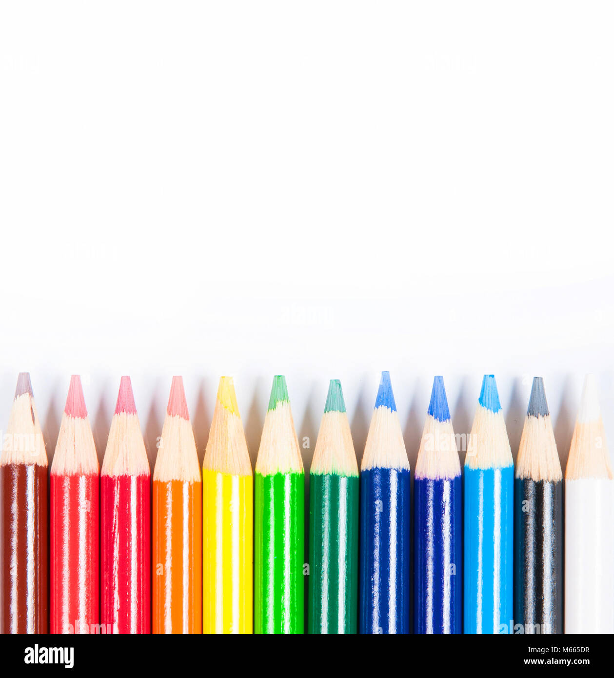 Coloured pencils isolated on the white background. Back to school - Stock Image