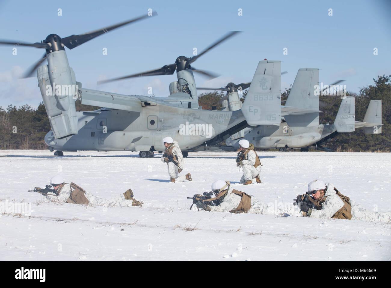 U.S. Marines buddy rush on Camp Sendai, Sendai, Japan, Feb. 19, 2018. Marines participate in a vertical insertion Stock Photo