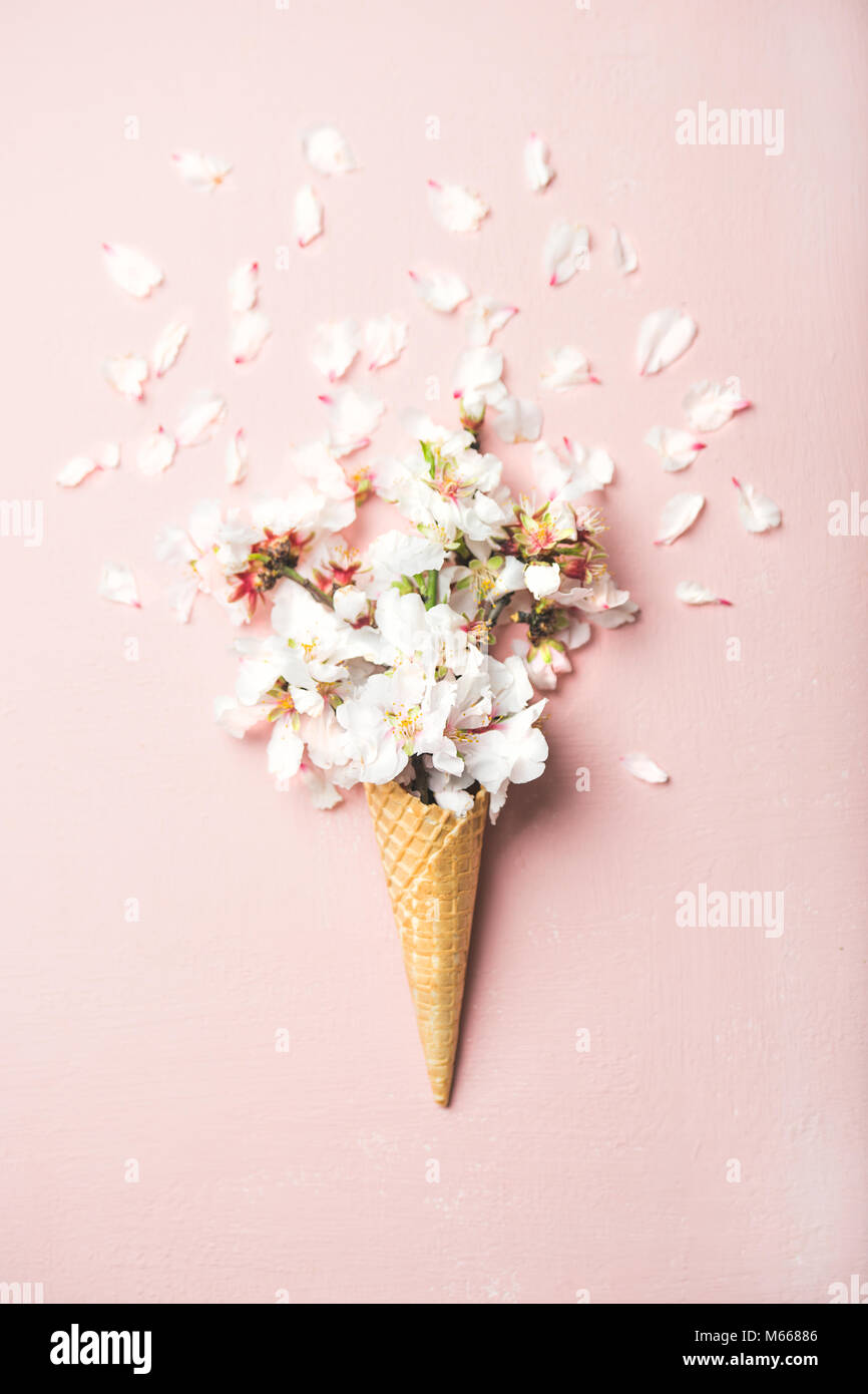 Waffle cone with white almond blossom flowers - Stock Image