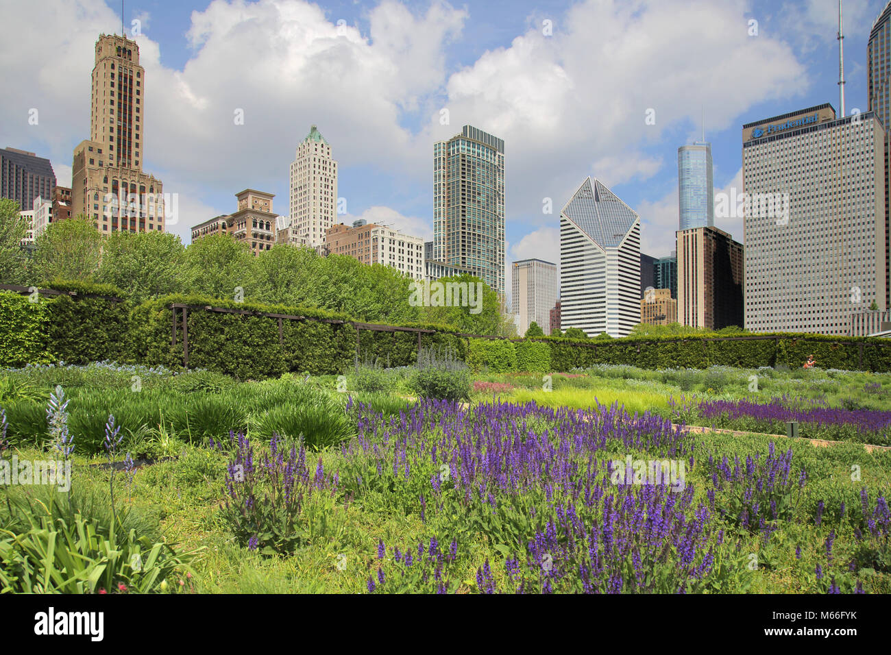 the maggie daley park chicago Illinois - Stock Image