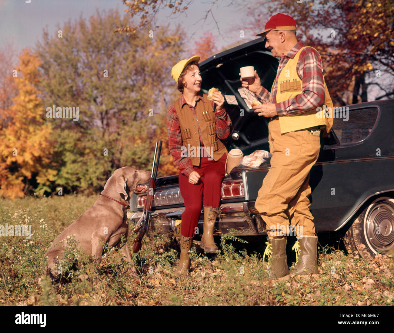 1970s ATTENTIVE WEIMARANER DOG WATCHING HUNTING COUPLE MAN AND WOMAN SITTING ON STANDING BY CAR TRUNK TALKING AND Stock Photo