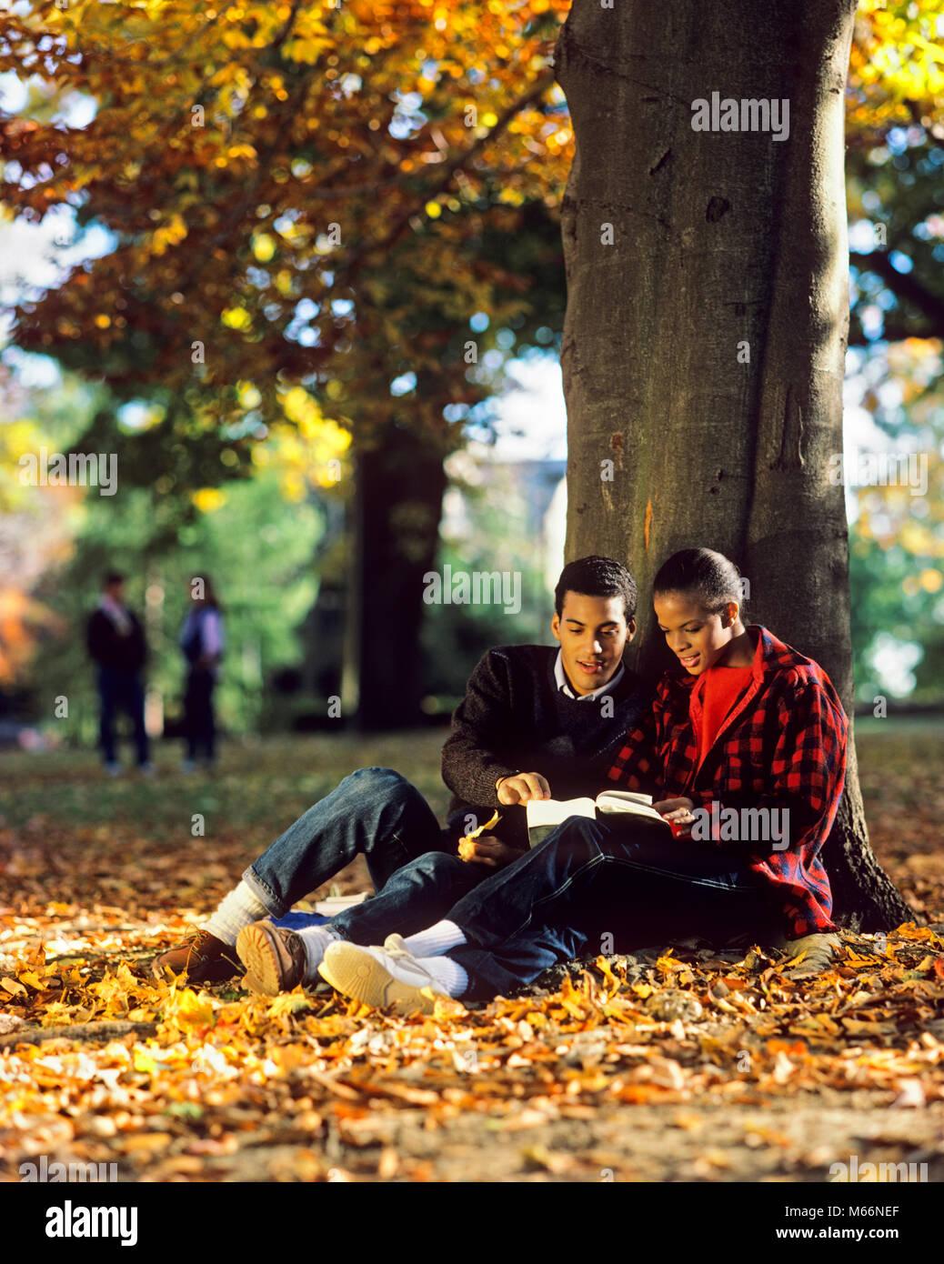 1980s AFRICAN AMERICAN COUPLE STUDYING UNDER TREE ON CAMPUS AUTUMN LEAVES - ks25792 DEG002 HARS STYLE COMMUNICATION - Stock Image