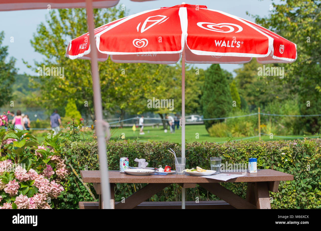 Outdoor table at a cafe with empty plates and cups after people have left without clearing up, in Summer in the - Stock Image