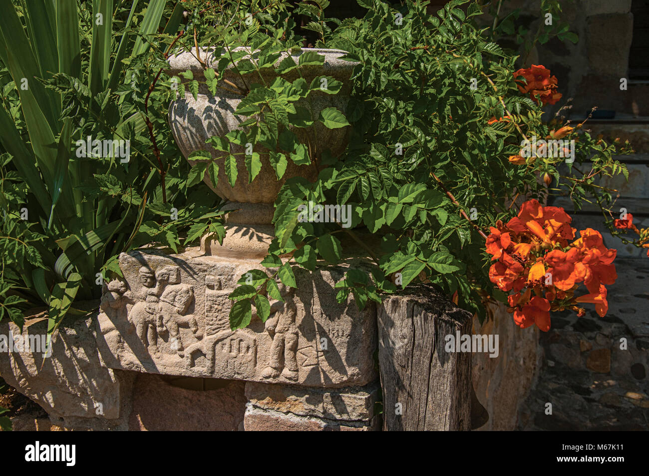 Stones and vase with shrubs and flowers, at the medieval Les Arcs-sur-Argens hamlet. Located in the Provence region, - Stock Image