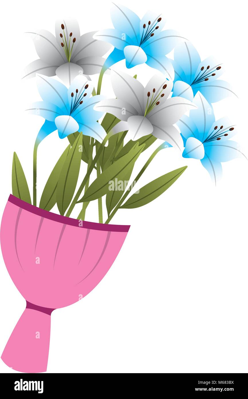 elegance delicate bouquet lilies flowers wrapped vector illustration - Stock Vector