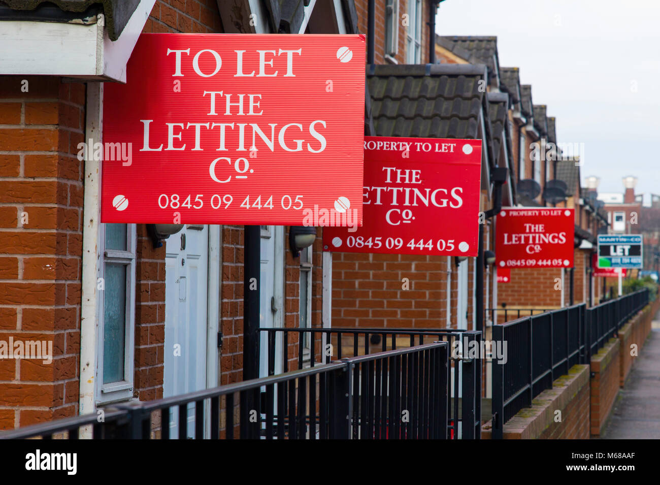 To let signs outside student accomodation in Leicester. - Stock Image