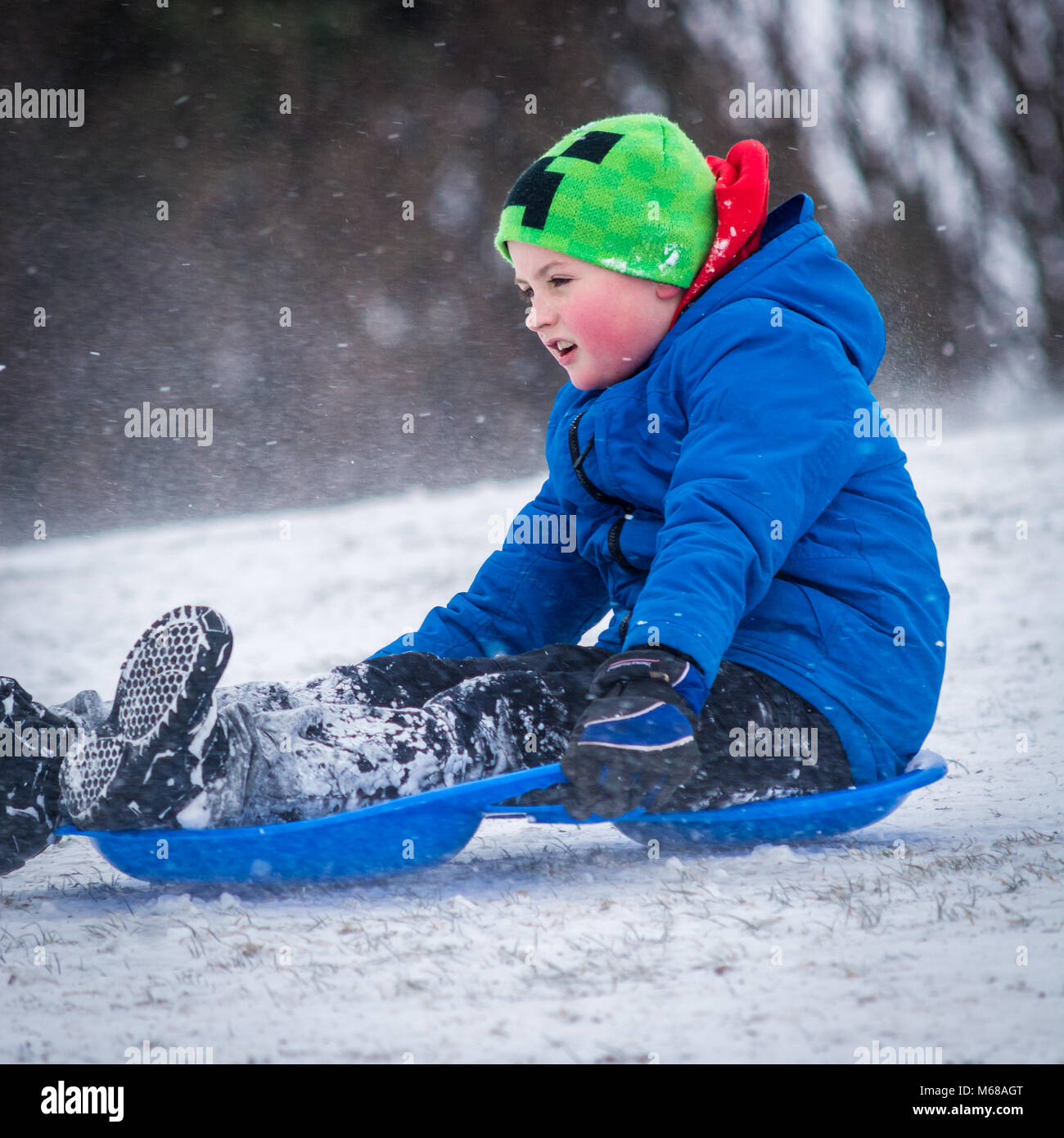 A little boy sledging in the snow during the Beast from the east storm - Stock Image
