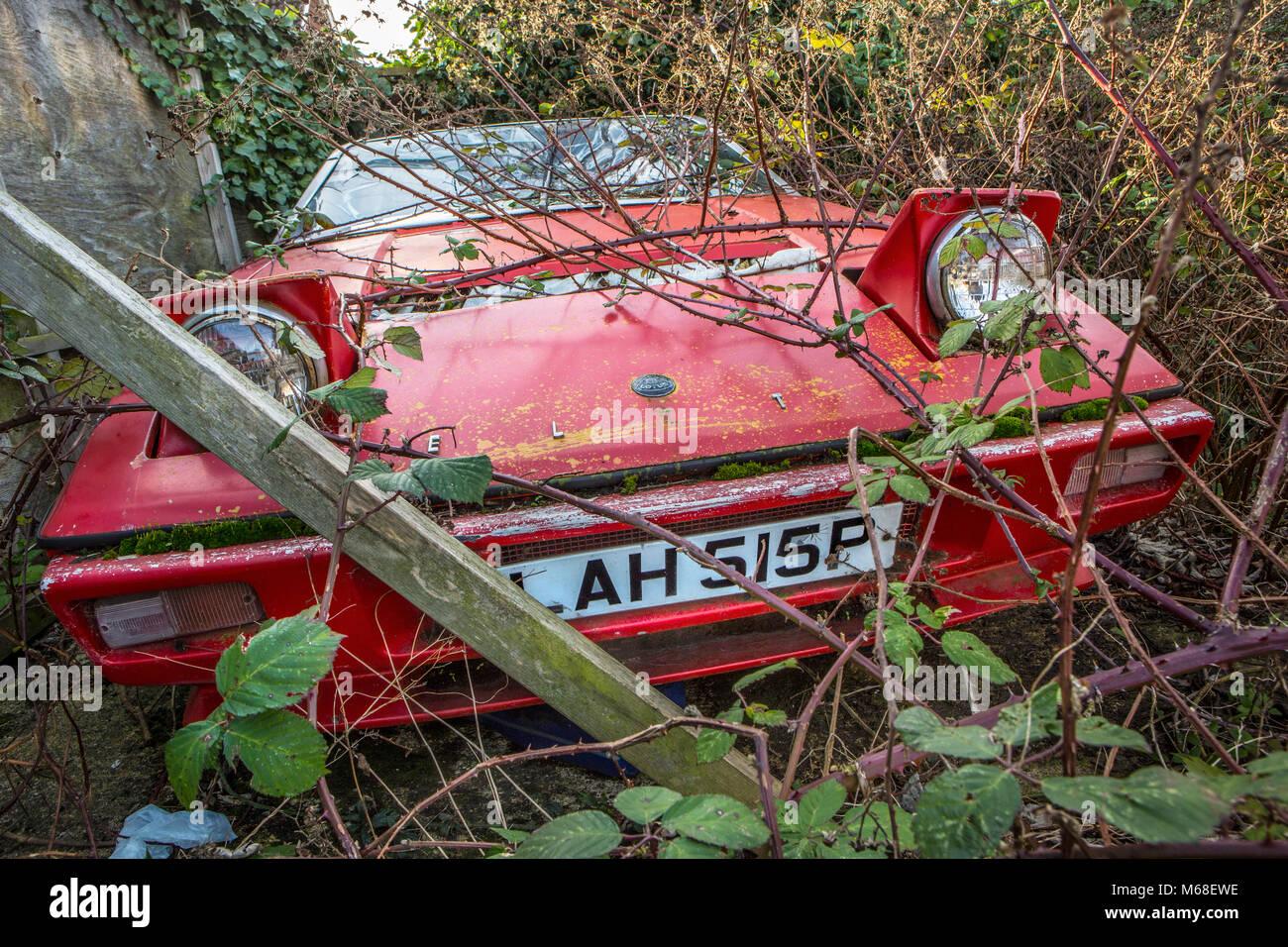 A derelict overgrown Lotus Elite - Stock Image