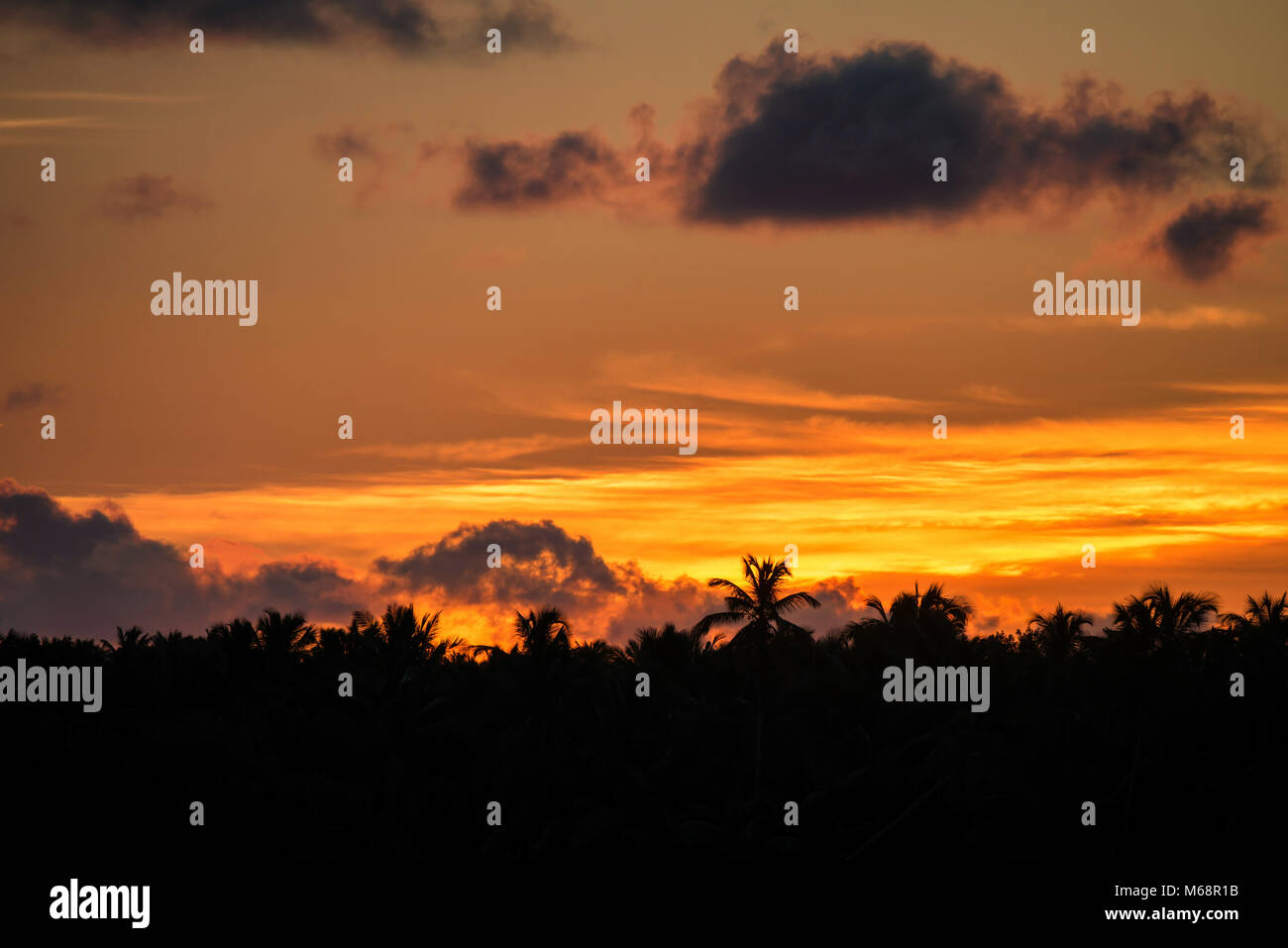 Scenic tropical sunset - Stock Image
