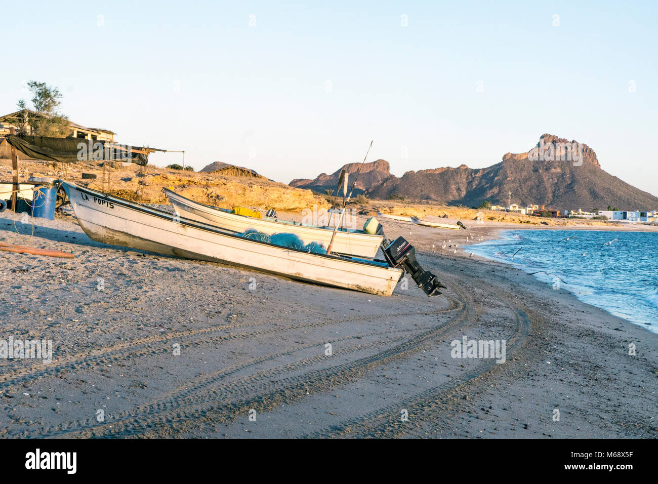 fishing boats with powerful outboard motors drawn up on beach at La Manga fishing village near San Carlos with new - Stock Image