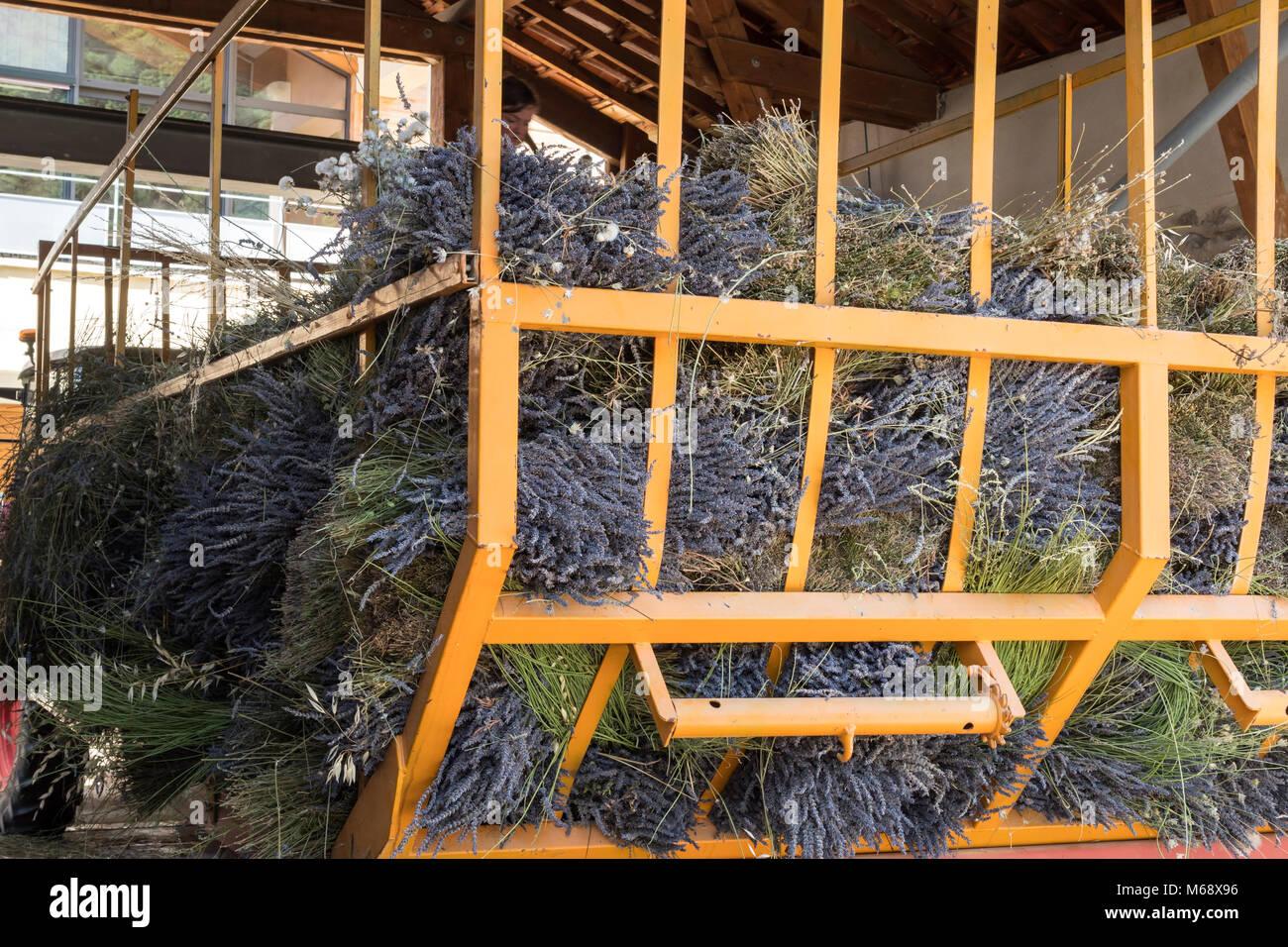 Lavender distillery Nyons Drôme Auvergne-Rhône-Alpes France Stock Photo
