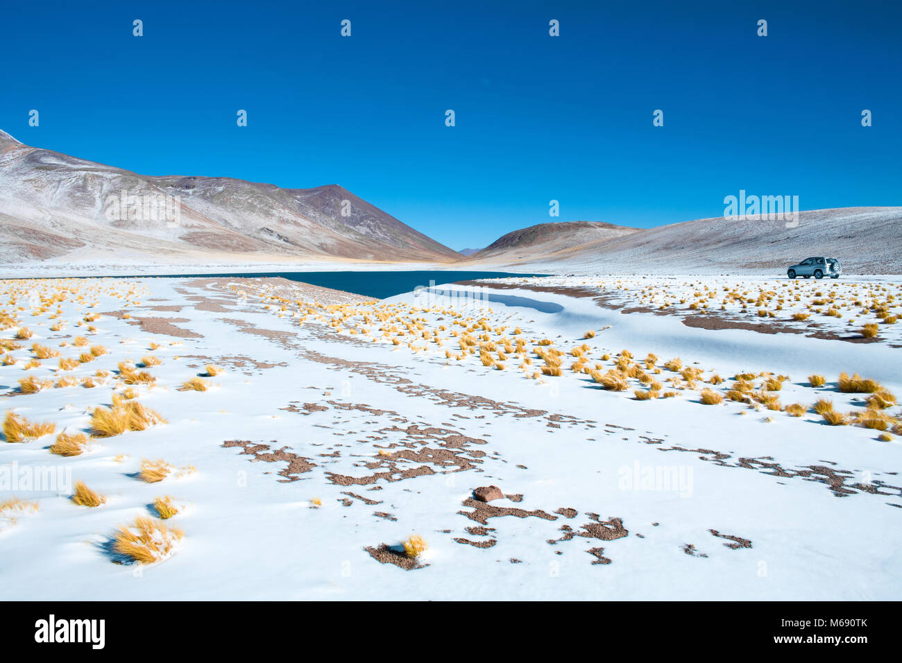 Miniques Lagoon in the Altiplano (High Andean Plateau) at an altitude of 4350m, Los Flamencos National Reserve, - Stock Image