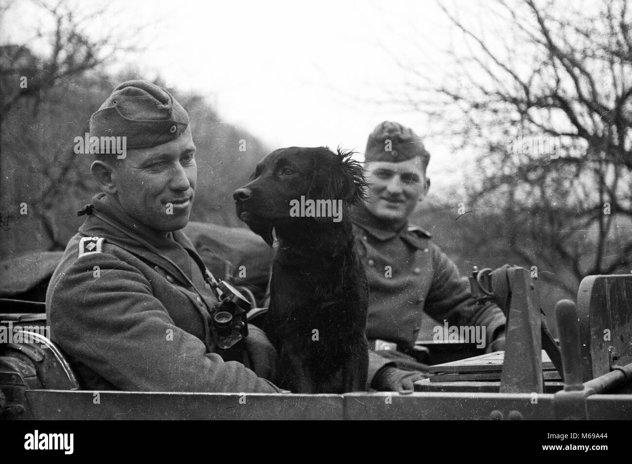 WW2 German Army Soldiers in Vehicle with dog in April 1941 during the invasion of Yugoslavia - Stock Image