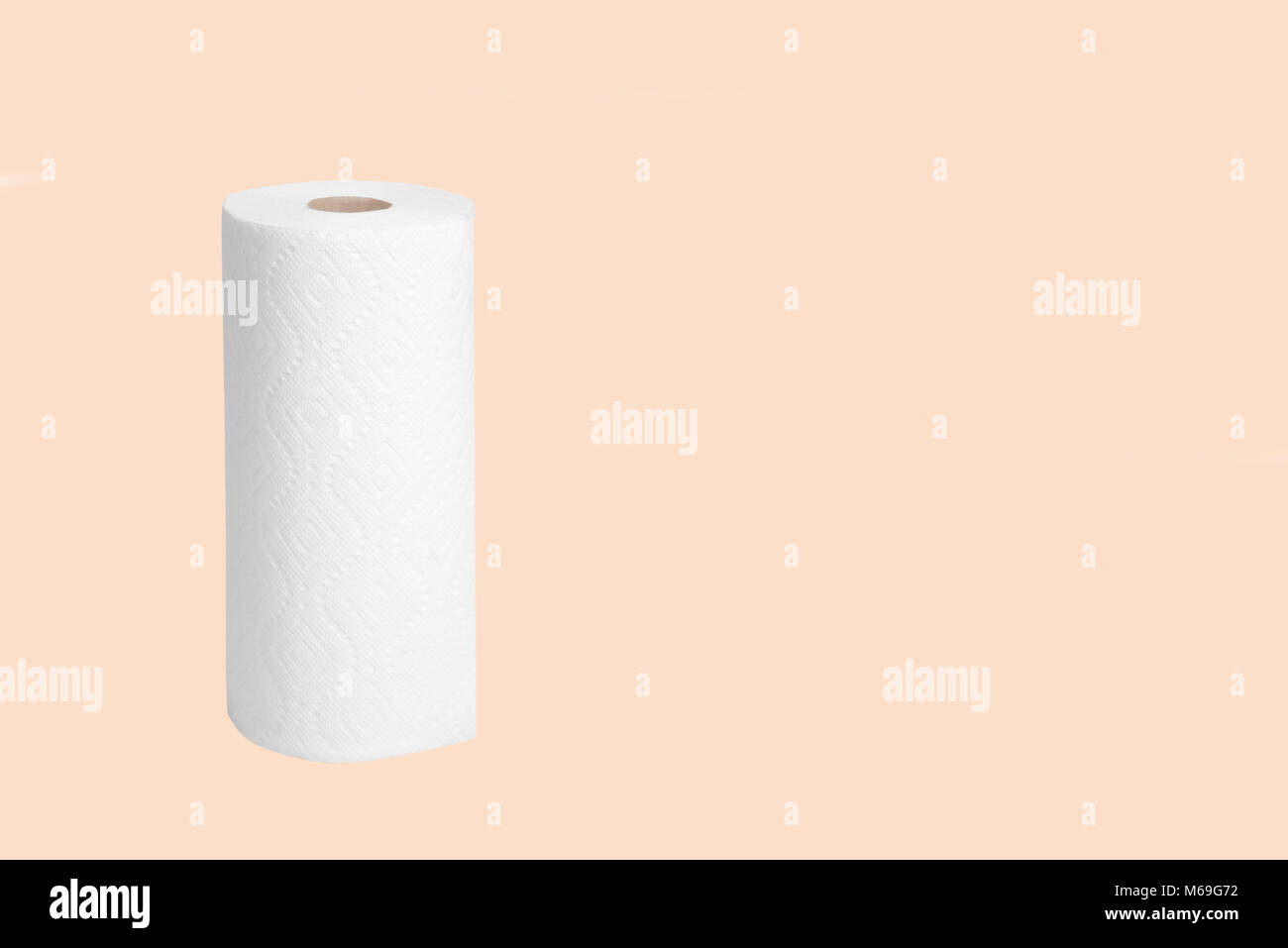 Roll of paper towel for housework on pastel background - Stock Image