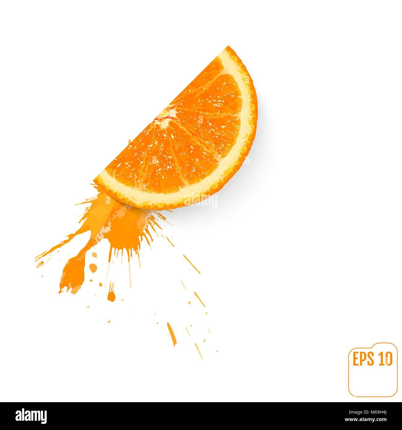 An orange slice with a spray of juice  Vector Stock Vector