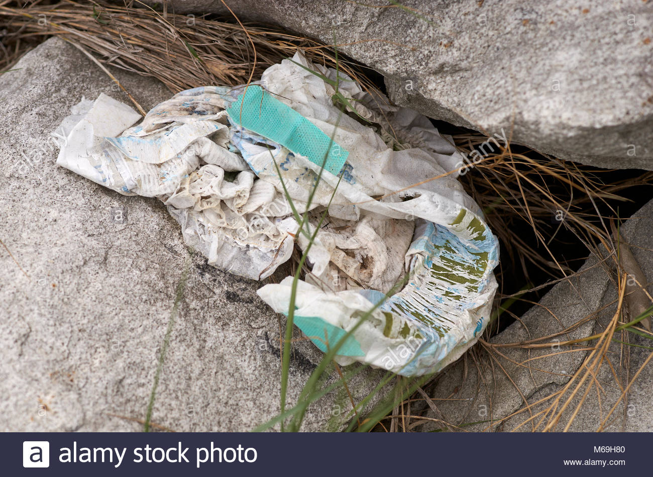 A used disposable nappy/diaper, lying amongst the rocks and leaf litter at the edge of a river.  It has obviously - Stock Image