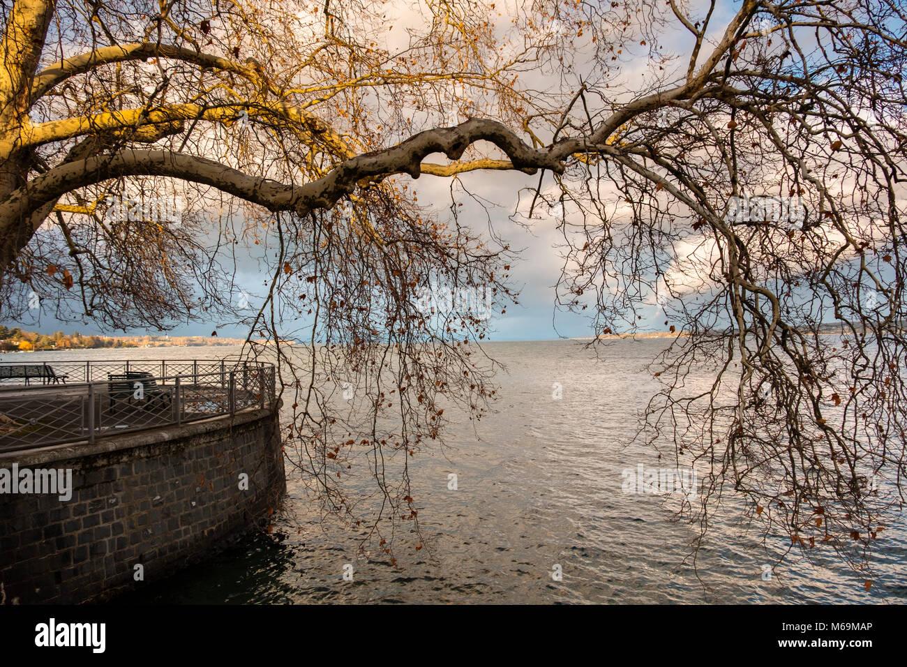 Leman Lake. Old town, historic center. Genève Suisse. Geneva. Switzerland Europe - Stock Image
