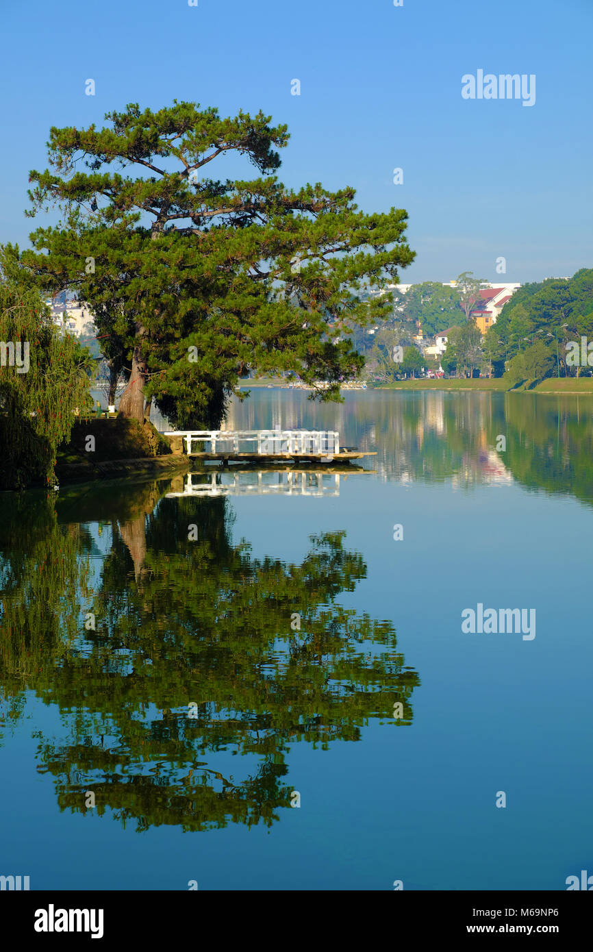 Beautiful Landscapes Of Da Lat City At Morning Pine Tree And Small Stock Photo Alamy