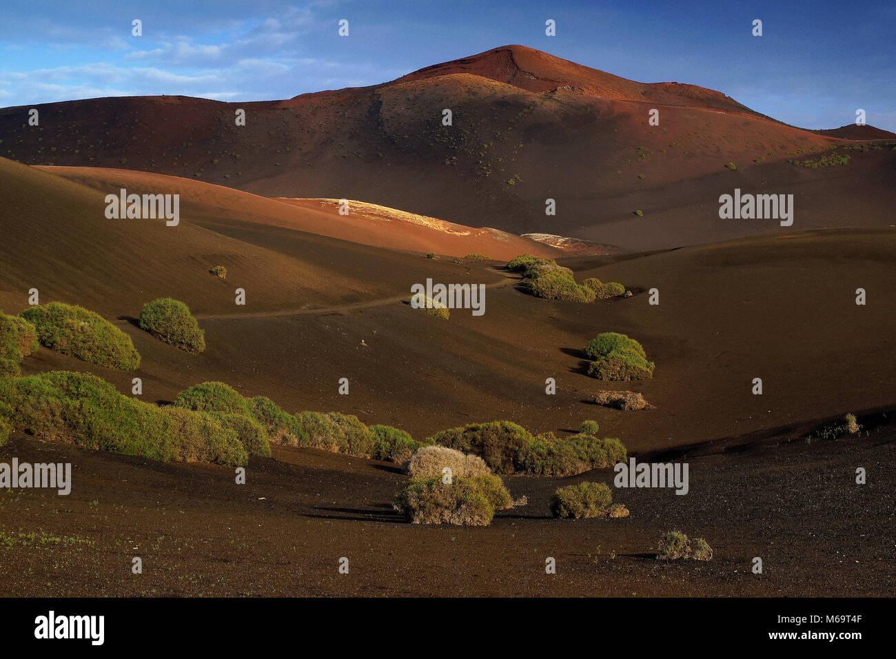 Canary Islands, Lanzarote, Timanfaya Nationalpark, Duenenlandscape, - Stock Image