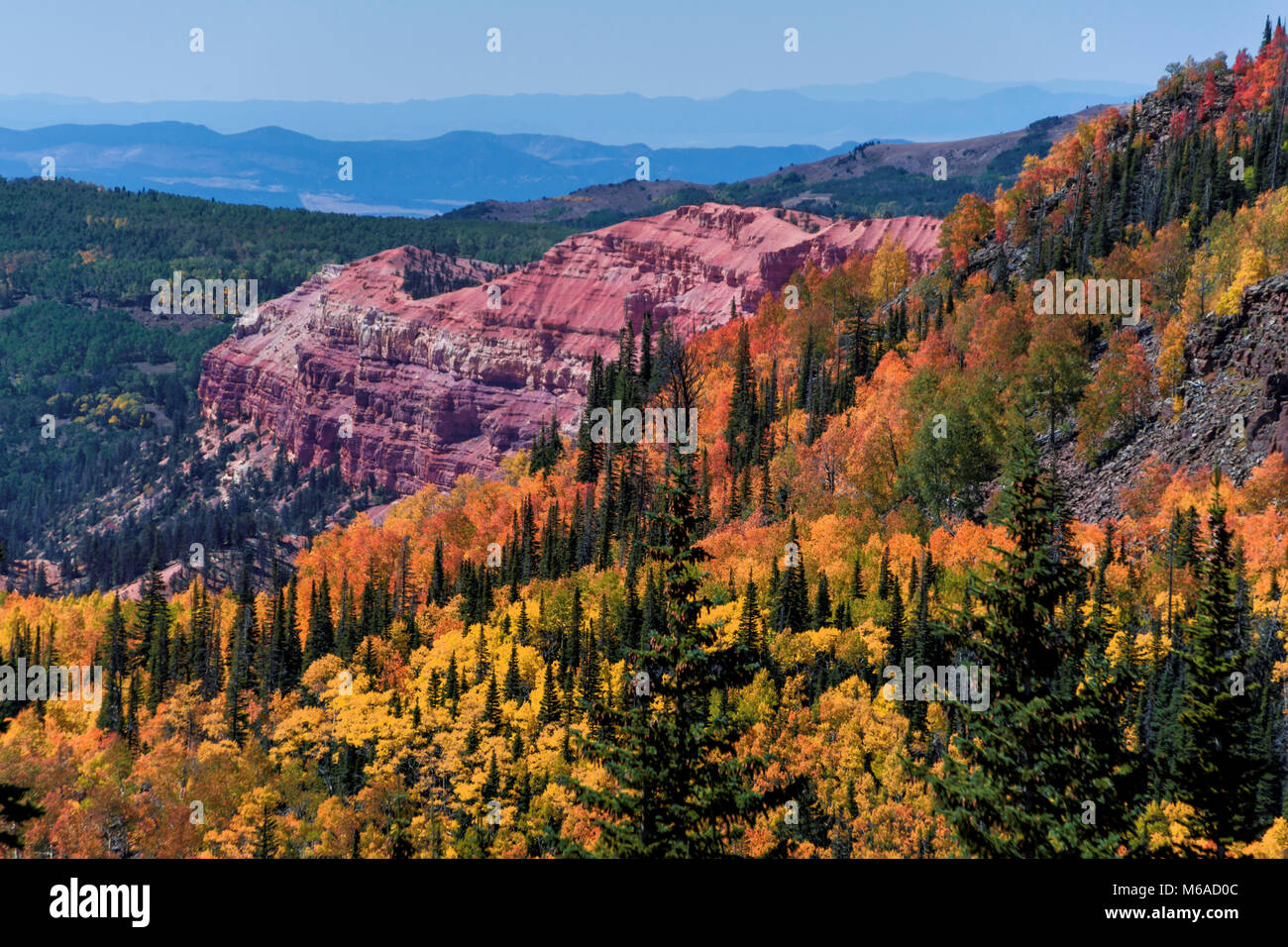 Cedar Breaks National Monument - the 'other' Bryce Canyon. - Stock Image