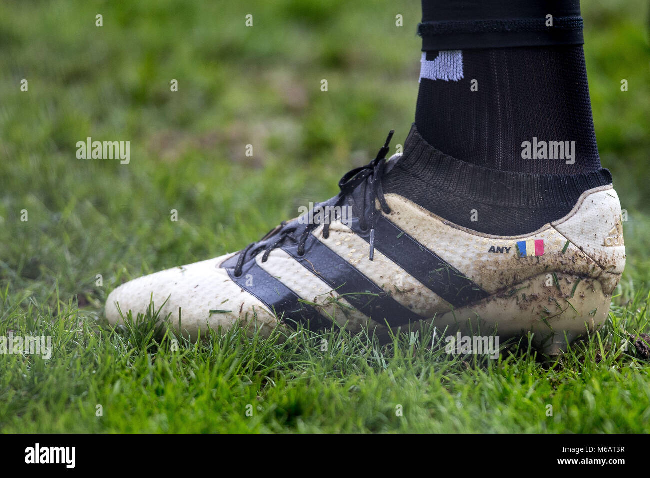 81fb3d94df45 Watford Goalkeeper Costel Pantilimon personalised adidas football boot  displaying ANY   the Romanian flag during the FA Cup fourth round match  between