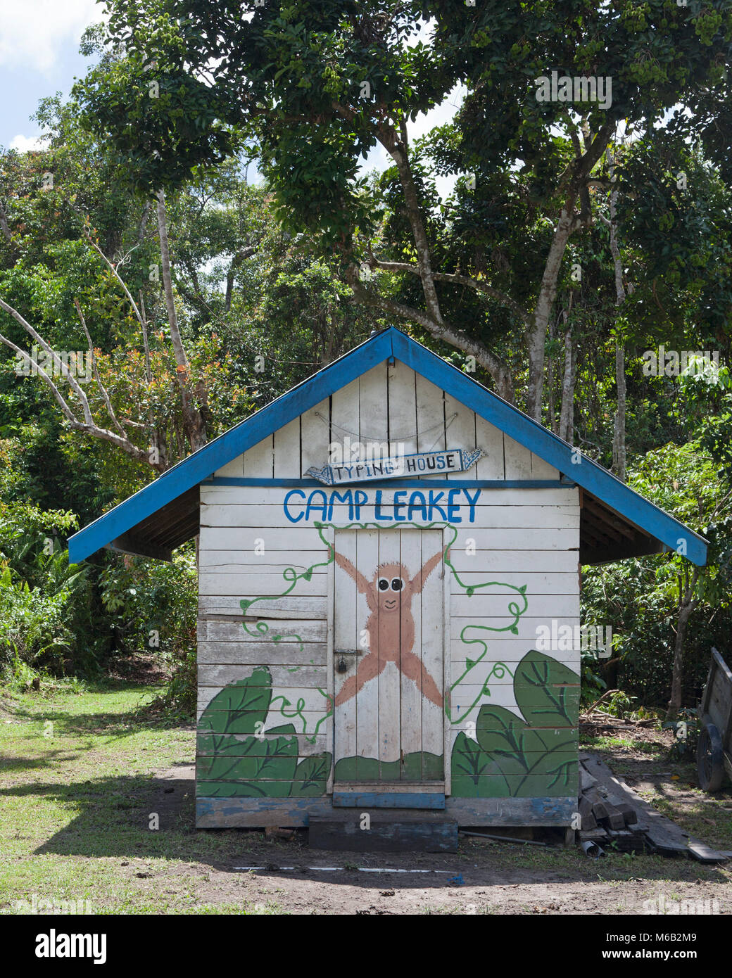 Camp Leakey typing house, where Dr. Birute Galdikas and her staff typed up their notes and reports. - Stock Image