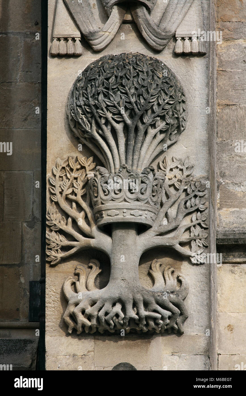 A stone carving on the west front of Bath Abbey, Bath. The carving is a rebus illustrating the name of Bishop Oliver - Stock Image