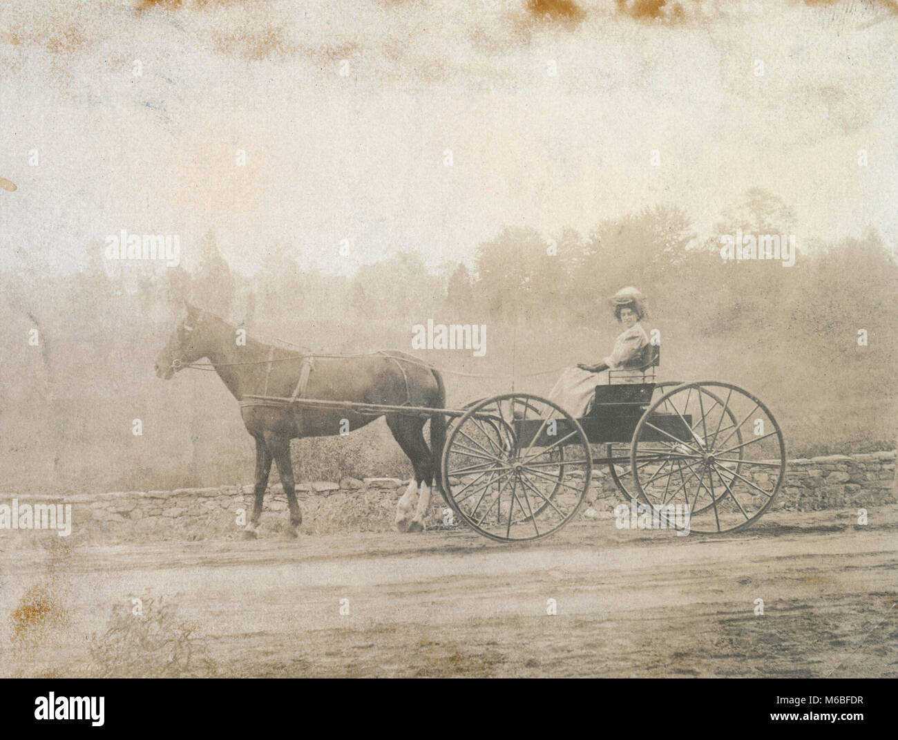 Antique c1900 photograph, woman horse-drawn driving carriage. Location unknown, probably New England, USA. - Stock Image