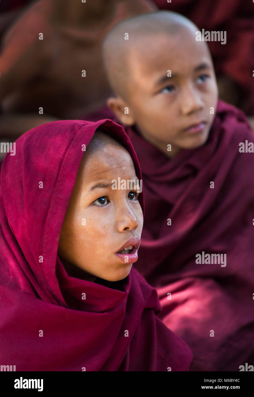 young novice monks faces watching television at Aung Myae Oo Monastic Free Education School, Sagaing, Mandalay, - Stock Image