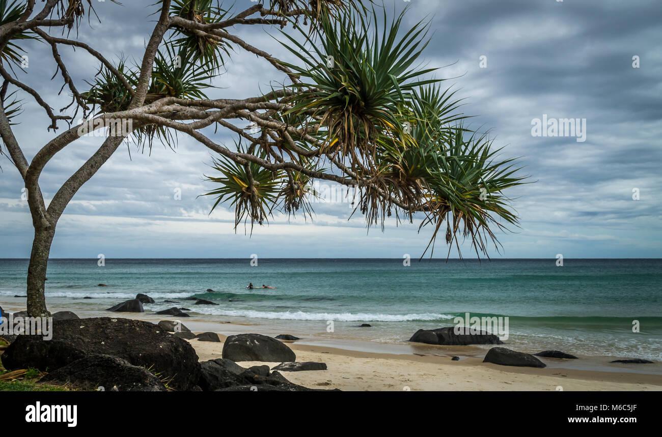 Noosa Beach Queensland Australia - Stock Image