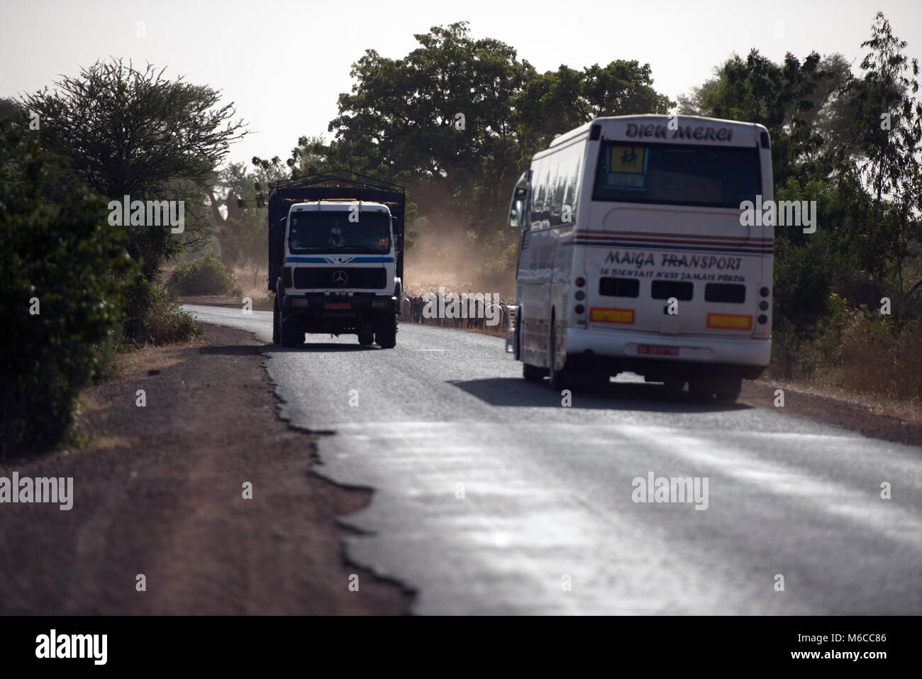 A bus passing a lorry (truck) on the road as indigenous Fulani people herd their cattle in the distance. Mali, West - Stock Image