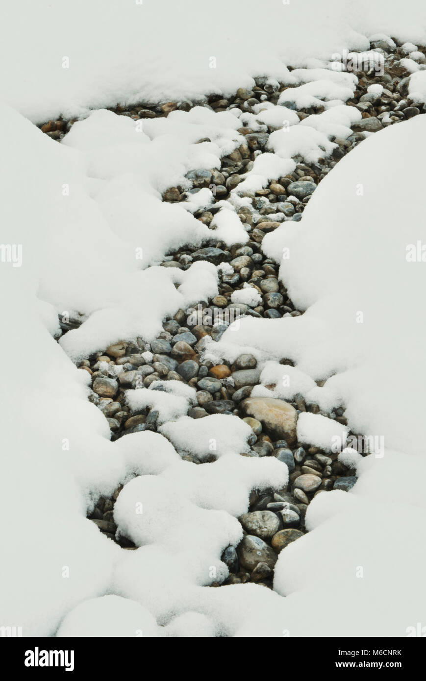 Pebbles and snow, Winter patterns, Banff National Park, Canadian Rockies, Alberta, CANADA Stock Photo