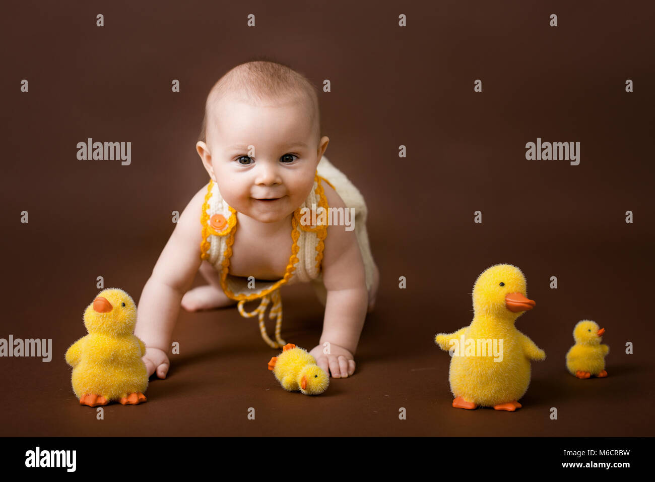 Little baby boy, playing with decorative ducks, isolated on brown ...