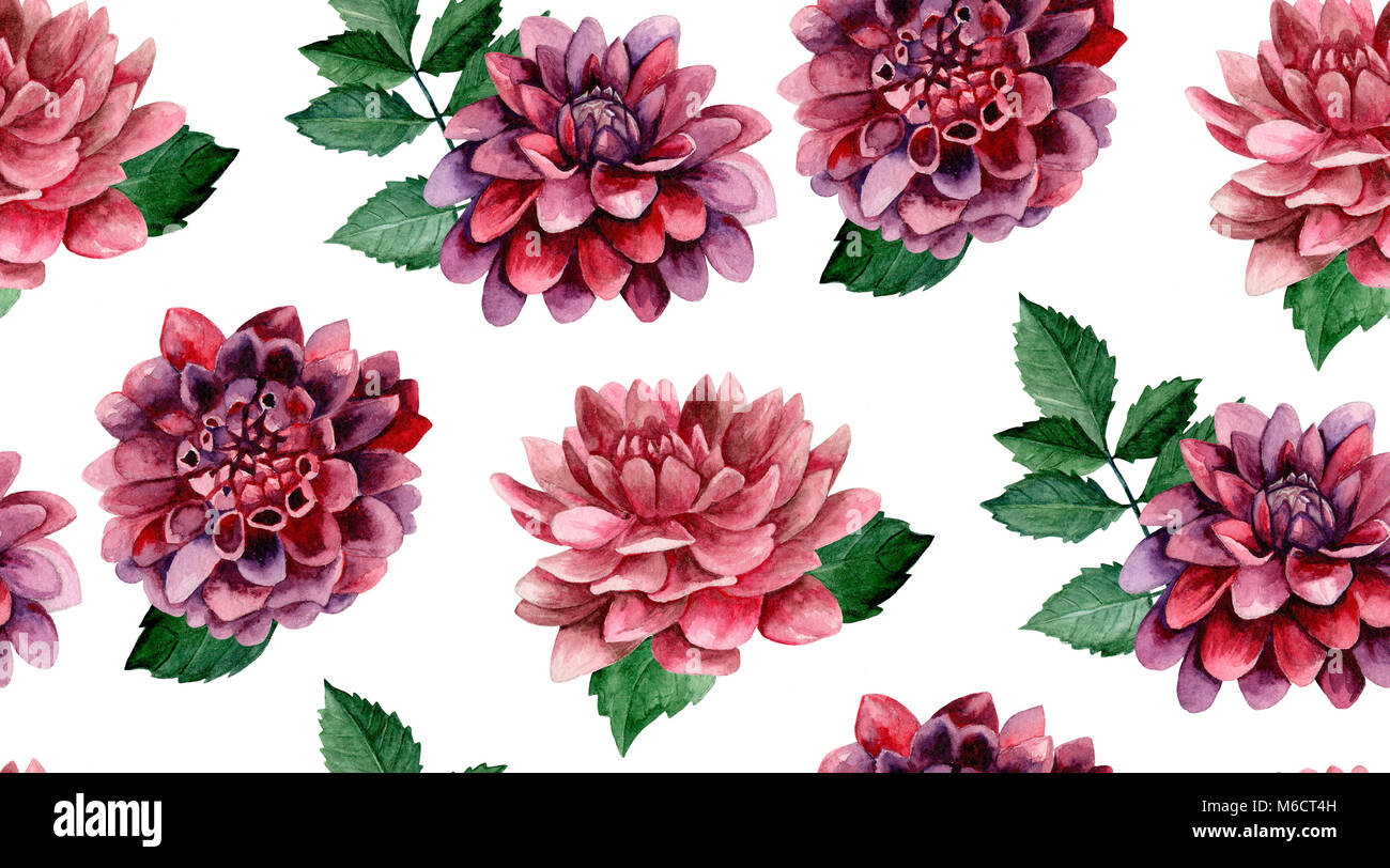 Dahlia watercolor flowers background. Floral seamless pattern Stock ...