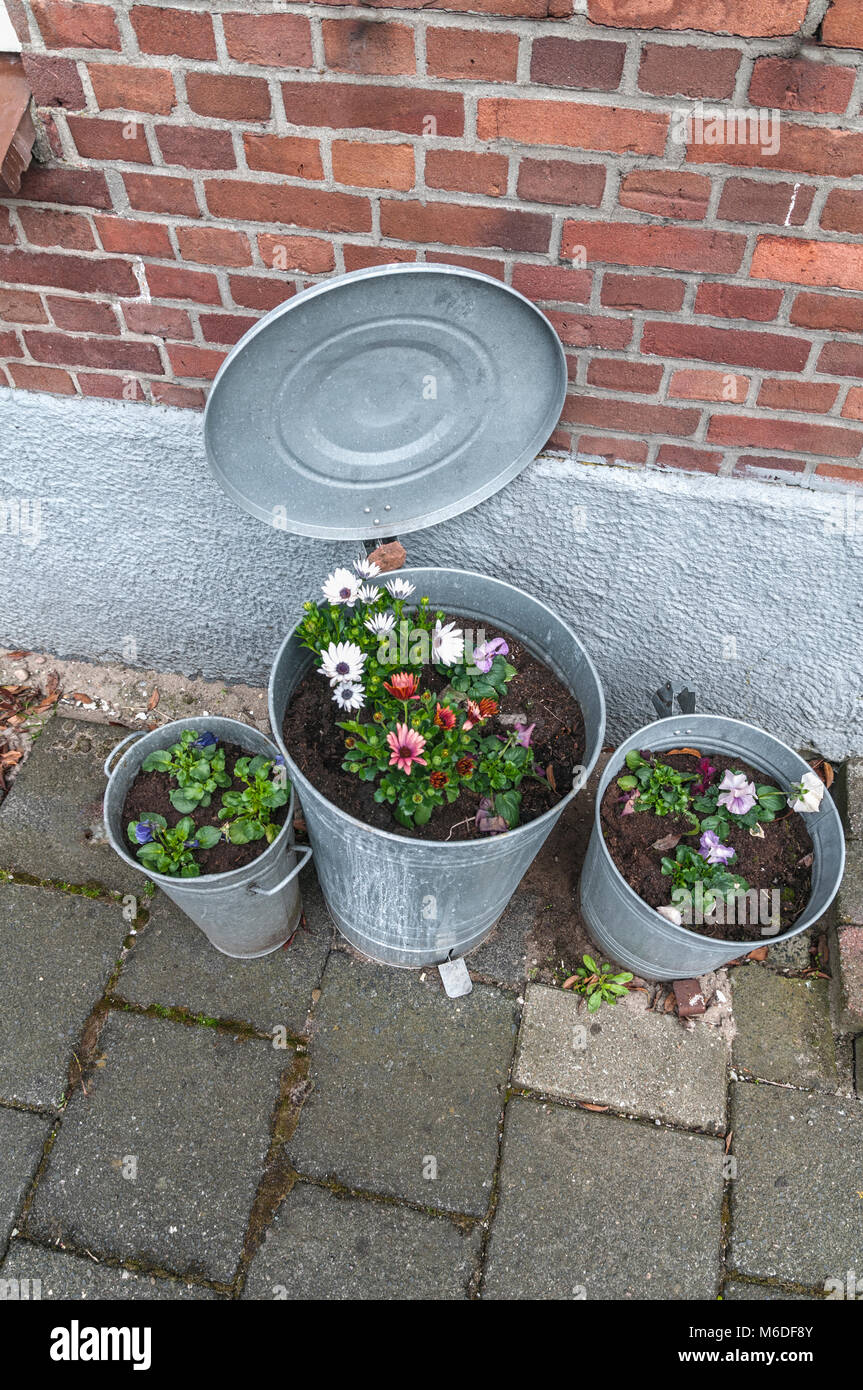 three galvanized metal pedal buckets filled with flowers placed by a stone wall - Stock Image