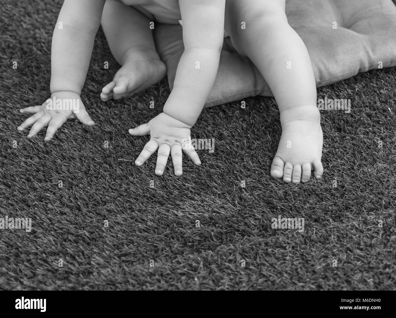 baby hands and feet on the grass - Stock Image