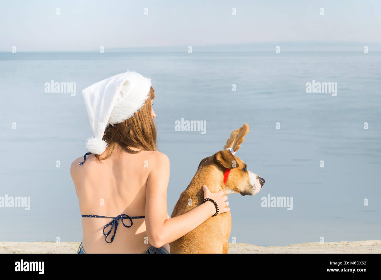 young female person in santa claus hat sit on beach next to staffordshire terier puppy with toy reindeer horns - Stock Image
