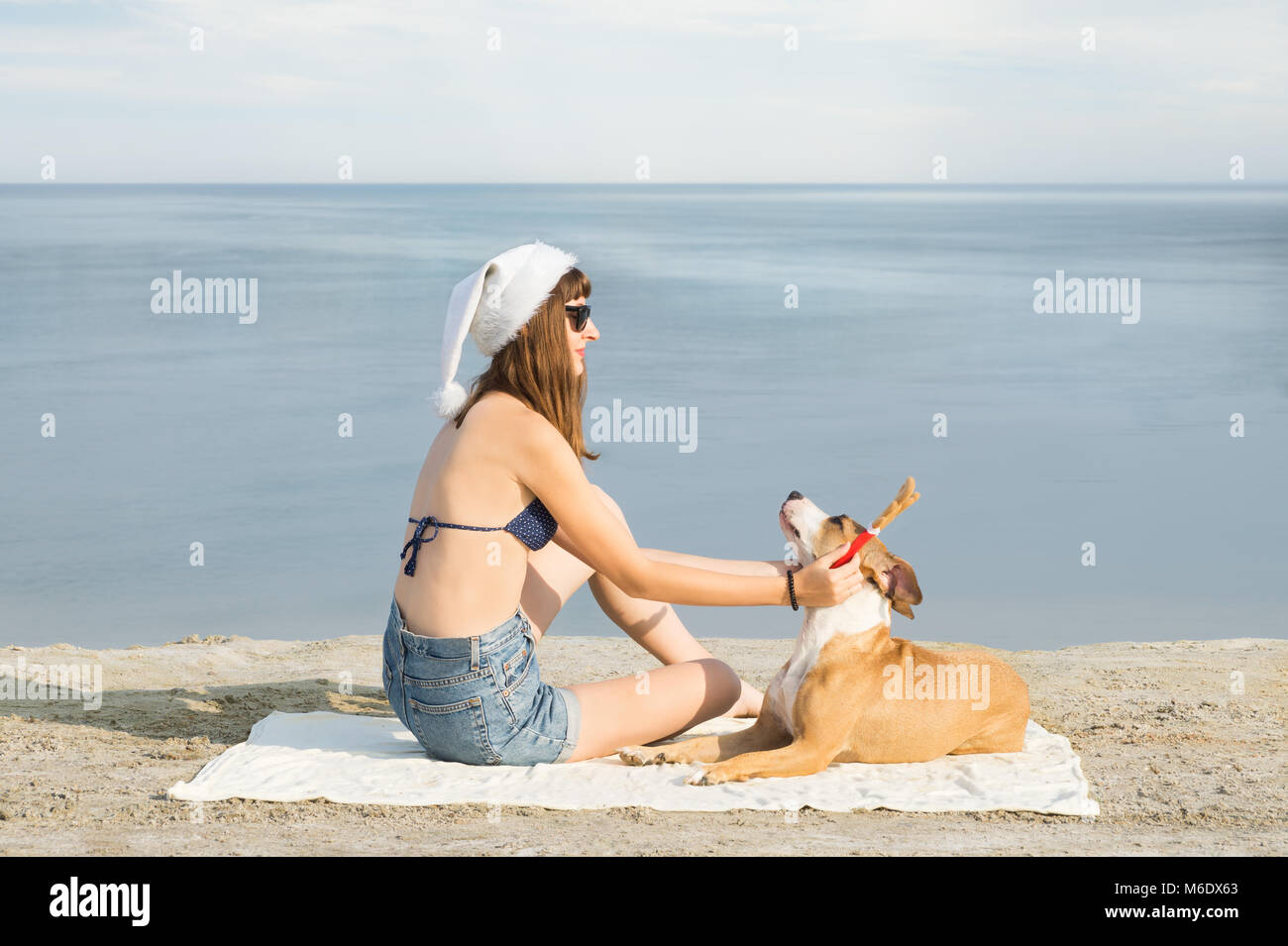 Young female person in bikini and santa claus hat sits on the beach and puts on reindeer horns on her staffordshire - Stock Image