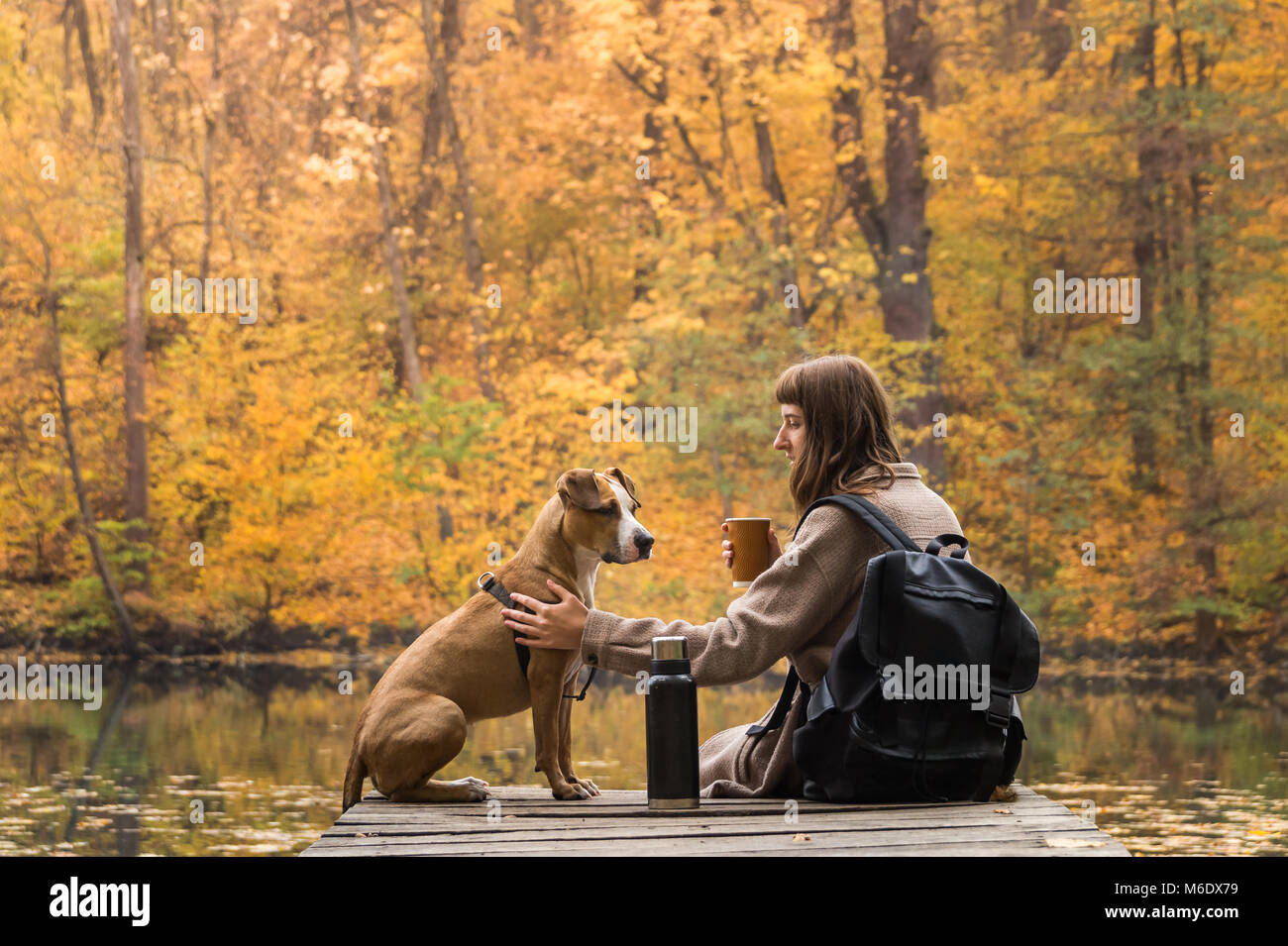 Girl and her pet staffordshire terrier hiking in the forest and have a rest at riverbank, female having big cup - Stock Image