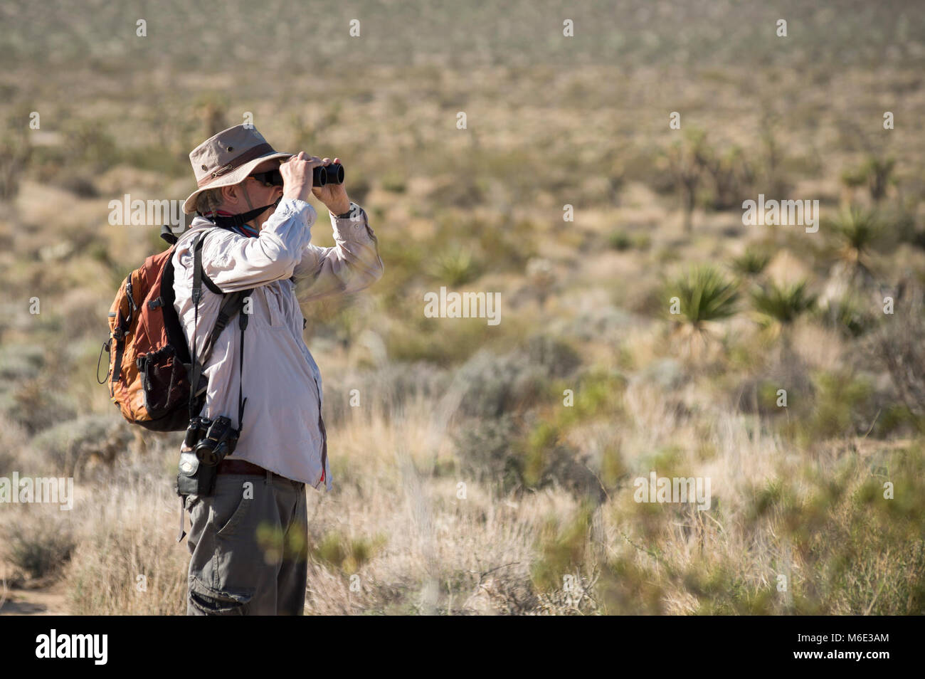 Earthwatch Volunteers Look for Birds as Part of a Climate. Stock Photo