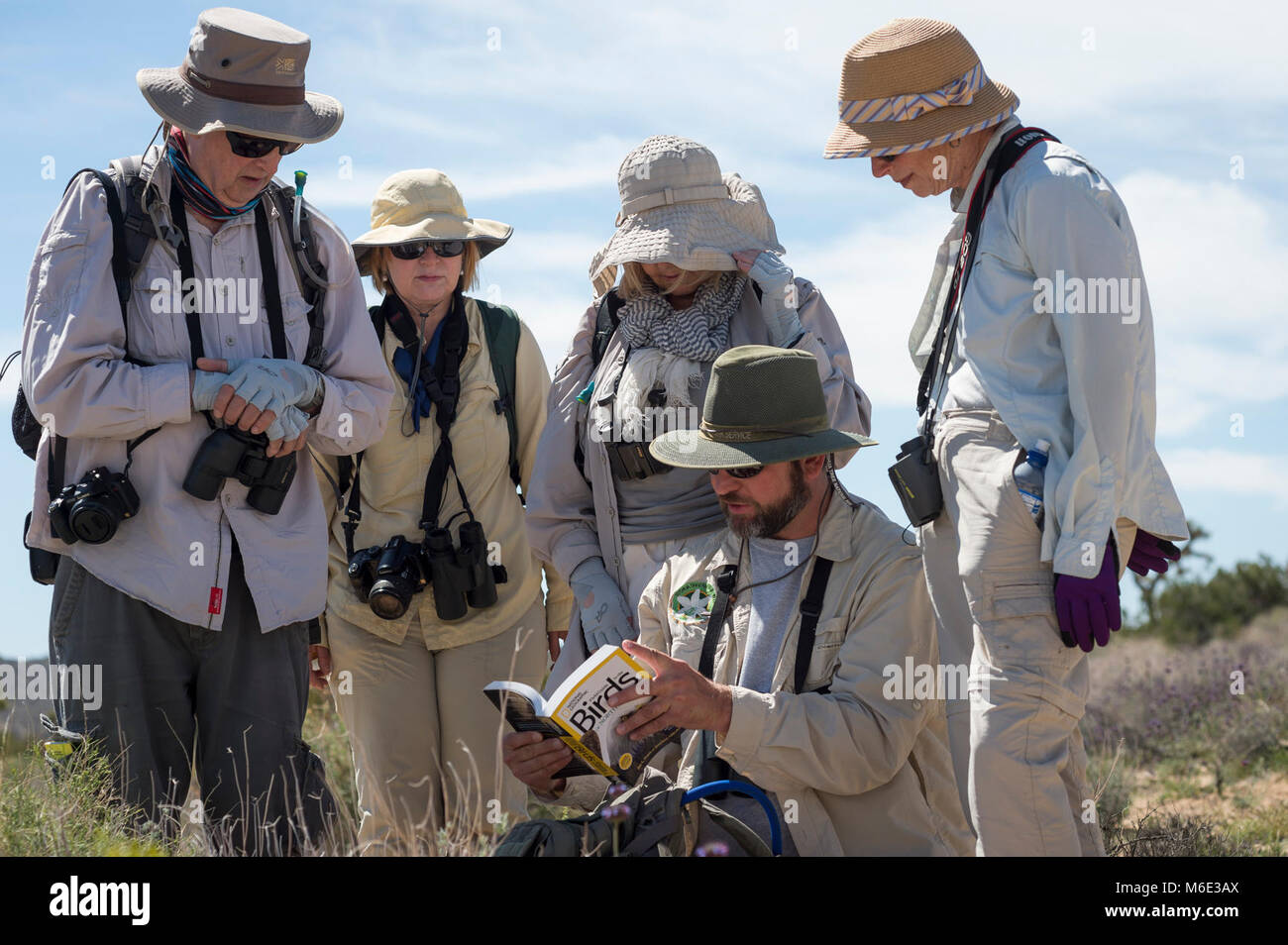 Earthwatch Volunteers Using a Field Guide to Identify Birds. Stock Photo