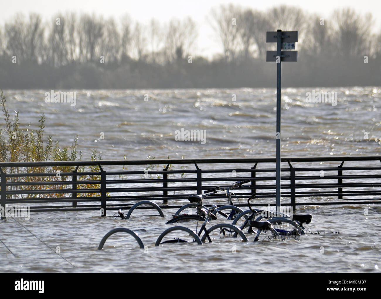Submerged bikes on the banks of the river Elbe - Stock Image
