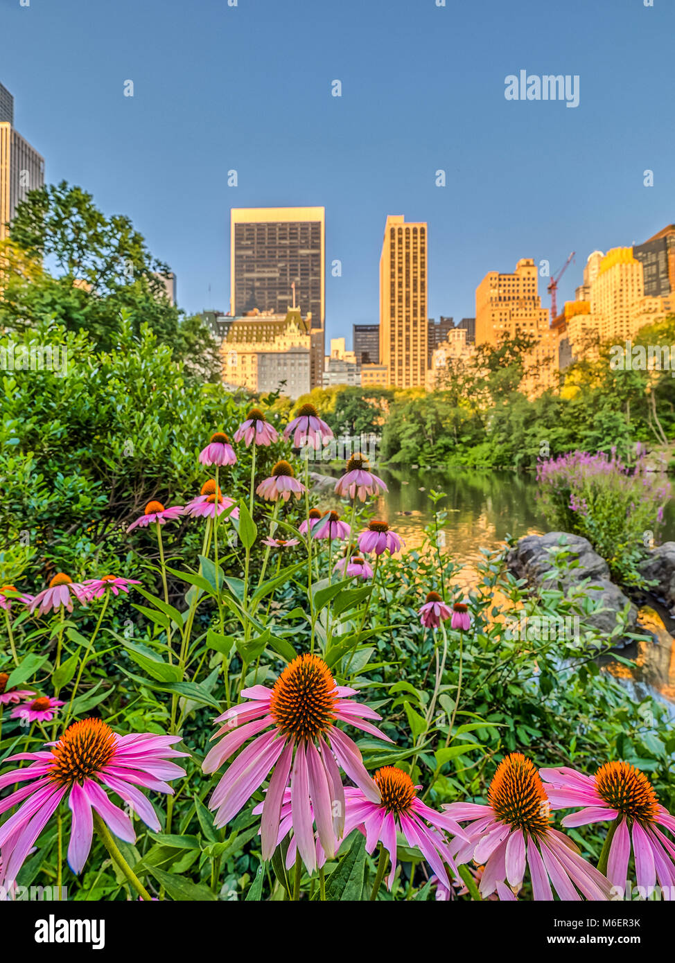 Central Park, New York City  in early spring - Stock Image
