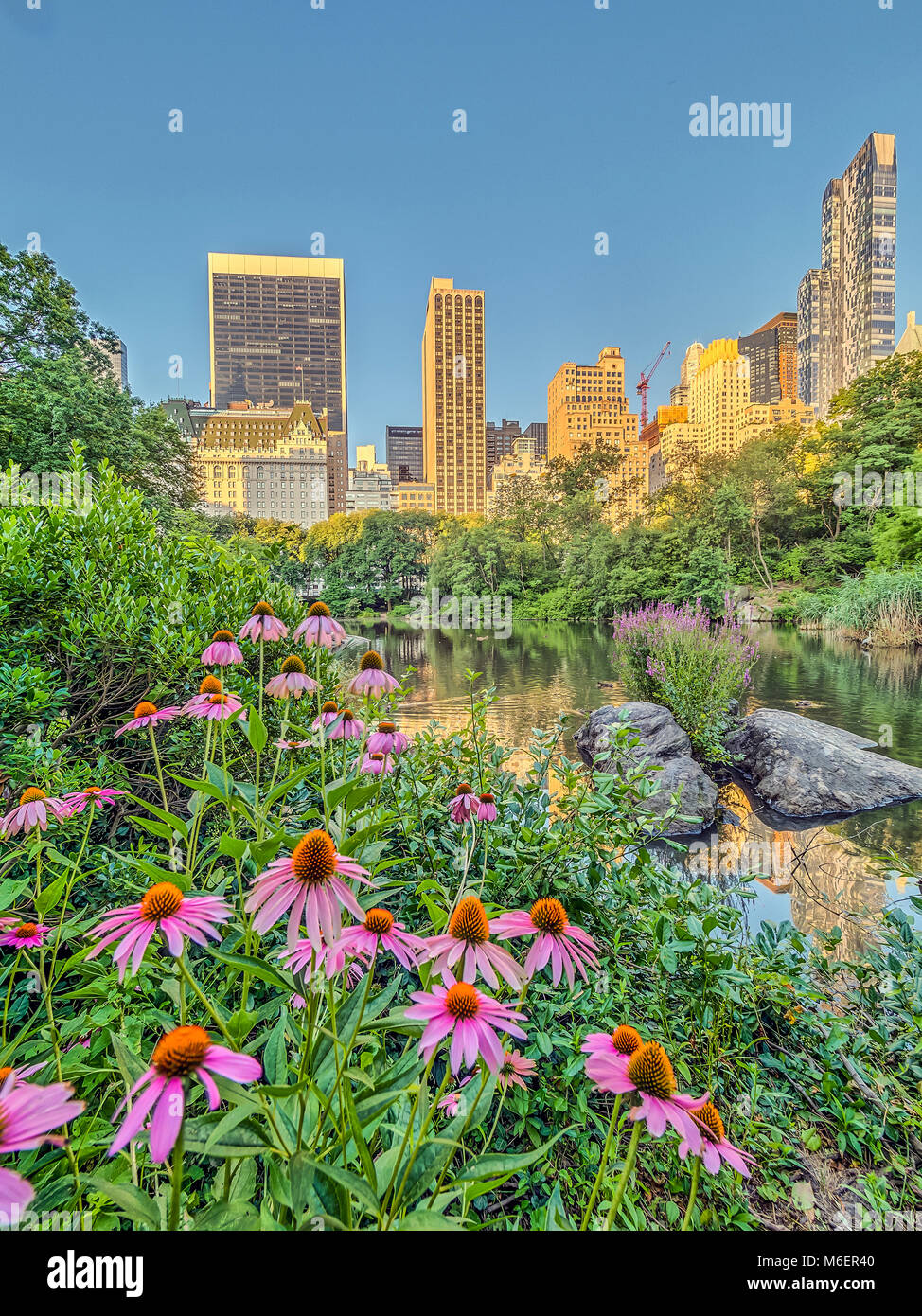 Central Park, New York City  in early spring Stock Photo