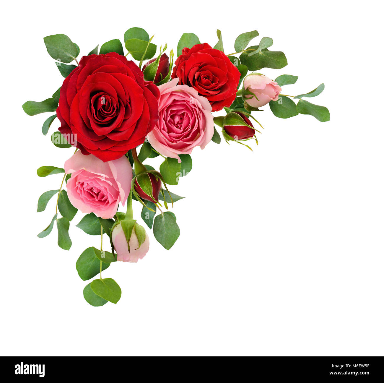 Red And Pink Rose Flowers With Eucalyptus Leaves In A Corner Stock