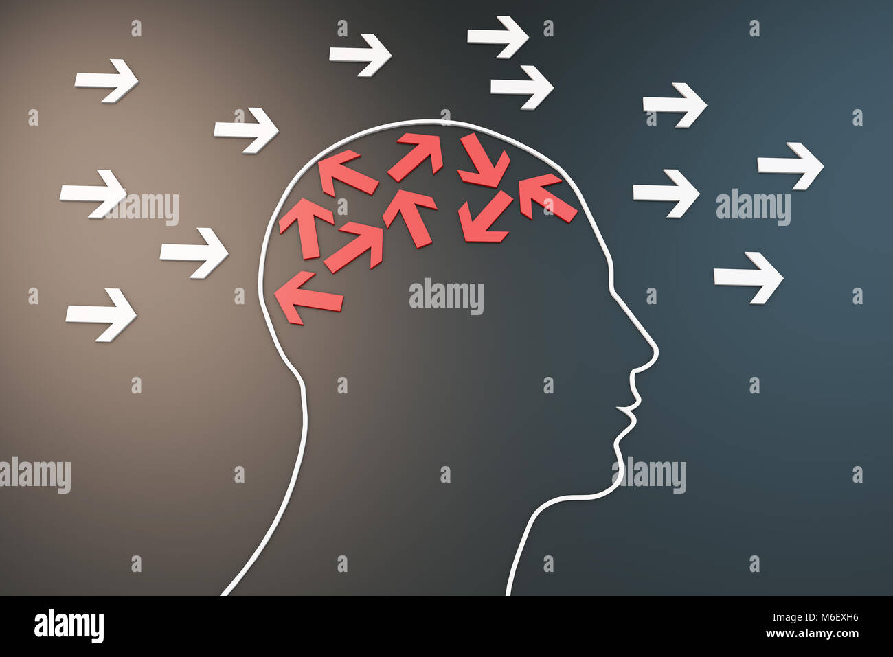 Human brain with arrow, way of thinking - Stock Image