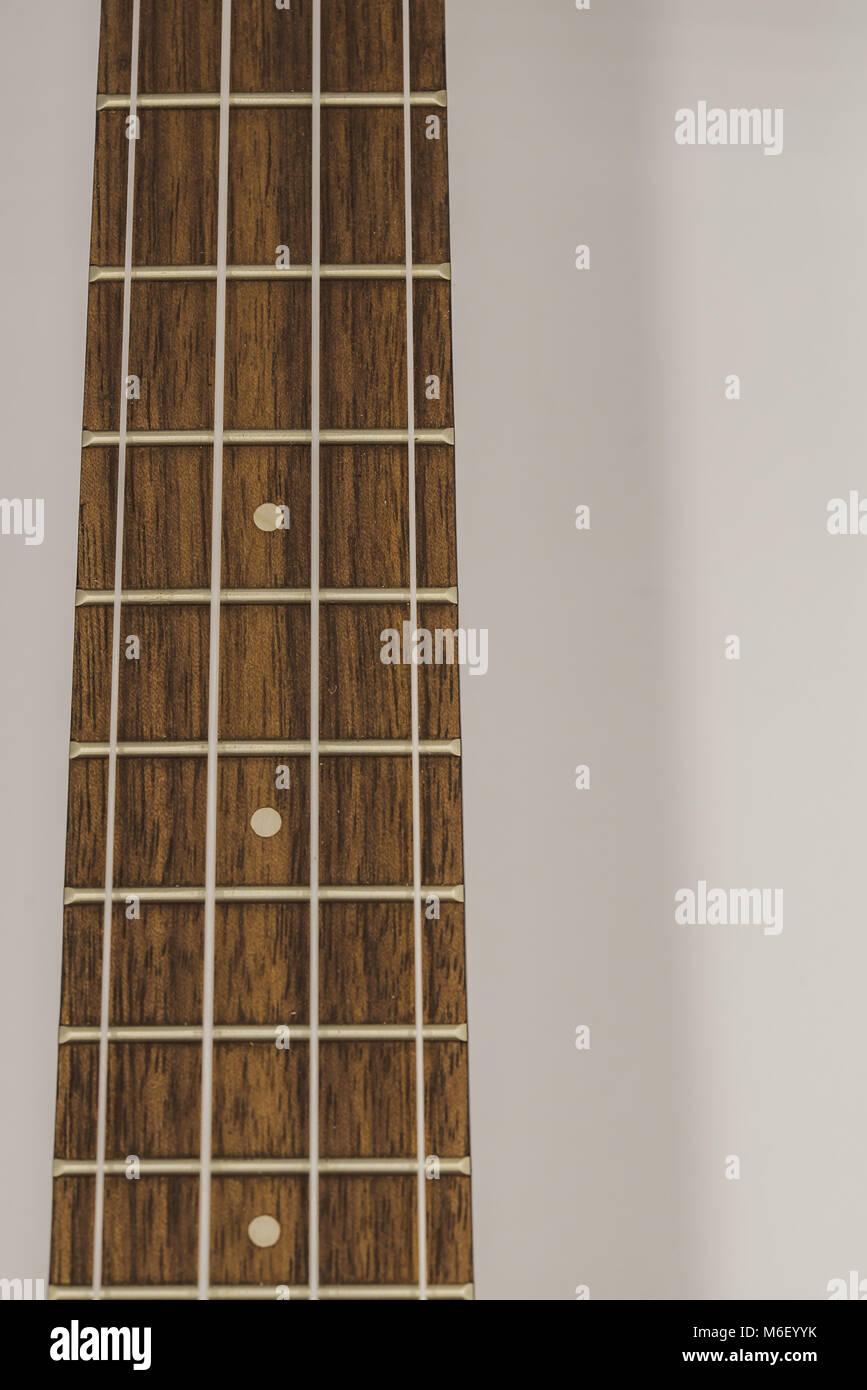 Ukulele neck and strings on white background - Stock Image