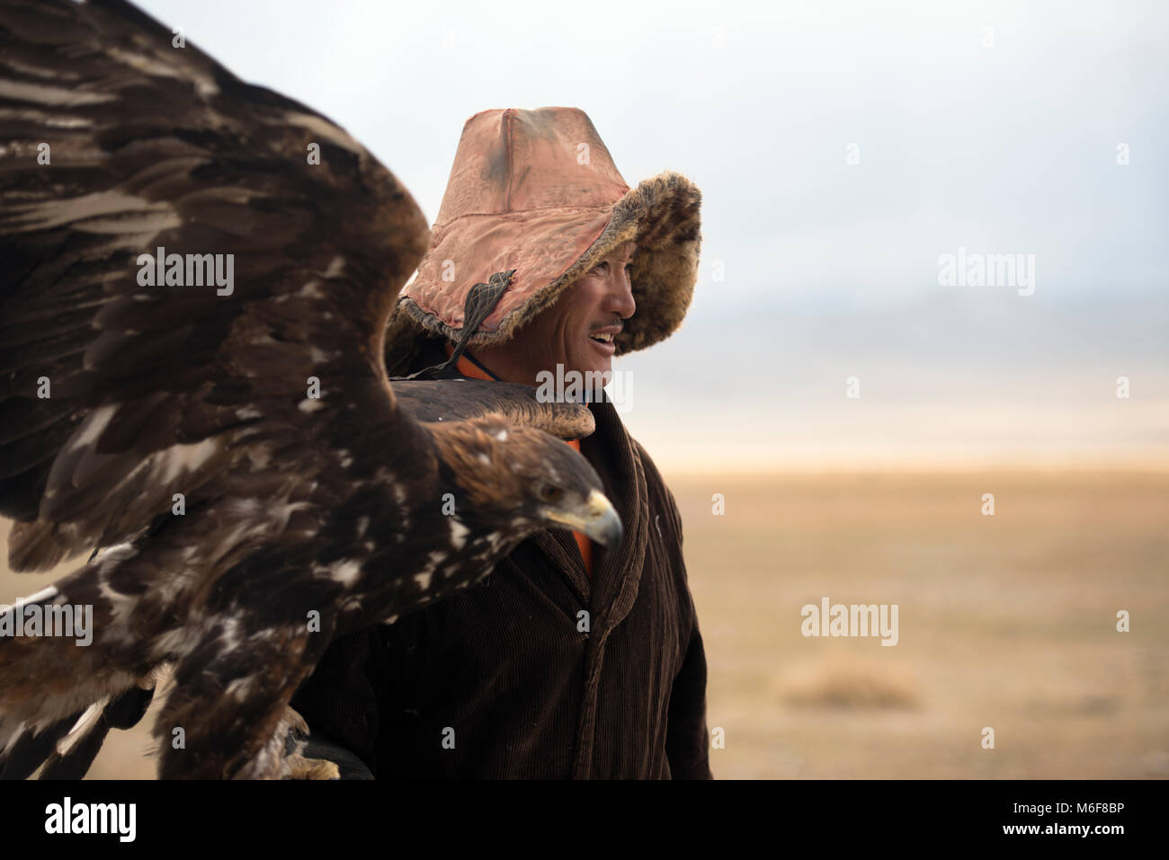An indigenous Kazakh eagle hunter with his golden eagle keeps the hunting tradition aalive. Altai Mountains, Mongolia. - Stock Image